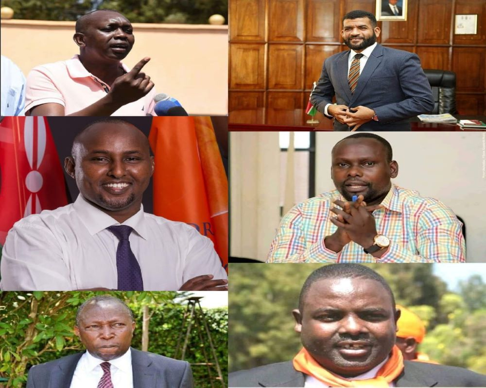 List of MPs Without Degrees Who Will Be Jobless In 2022